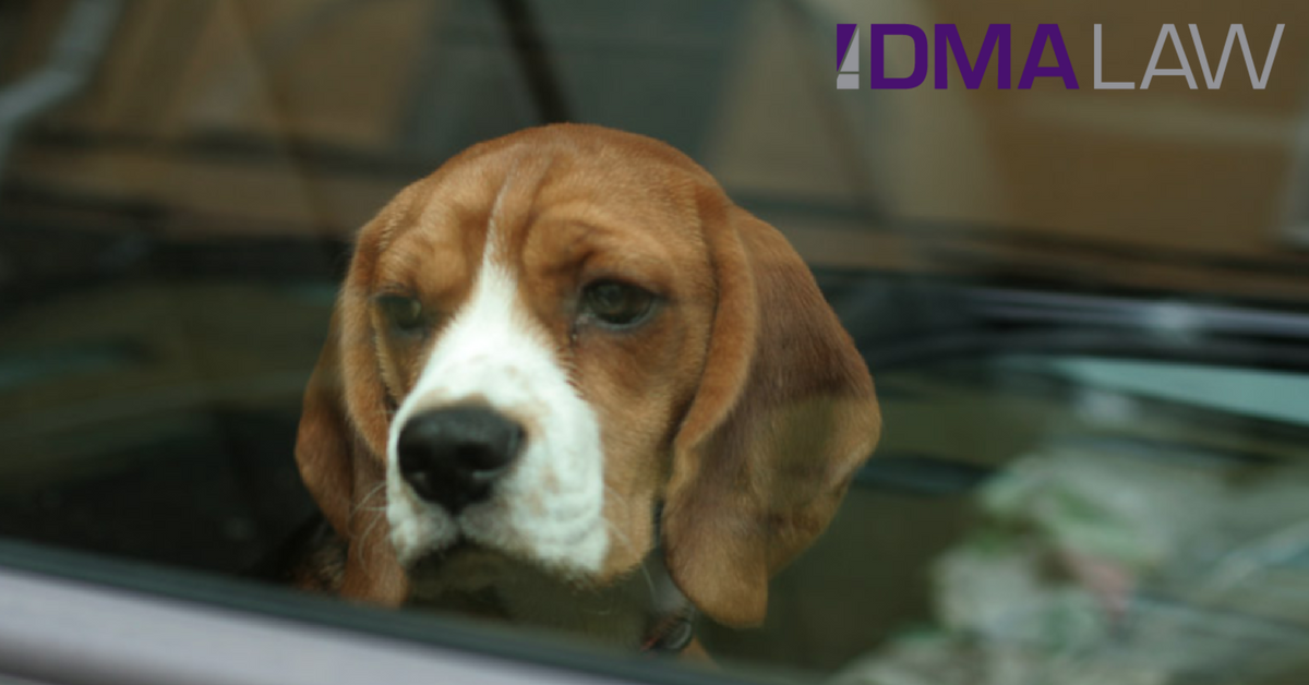 Is it illegal to leave your dog in a car on a hot day?